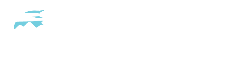 Trail Bicycles Home Page