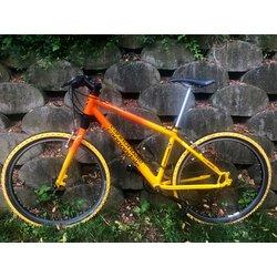 Cannondale Cannondale F1000 Mountain Bike Medium