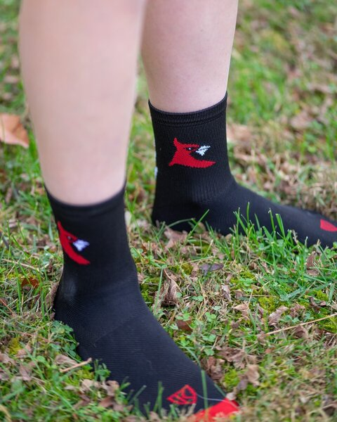 Cardinal Bicycle Crew Socks