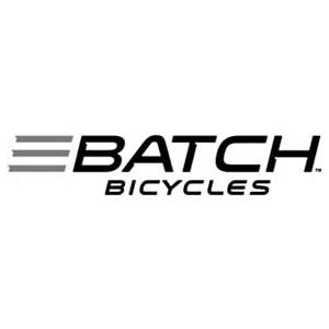 Batch e bikes