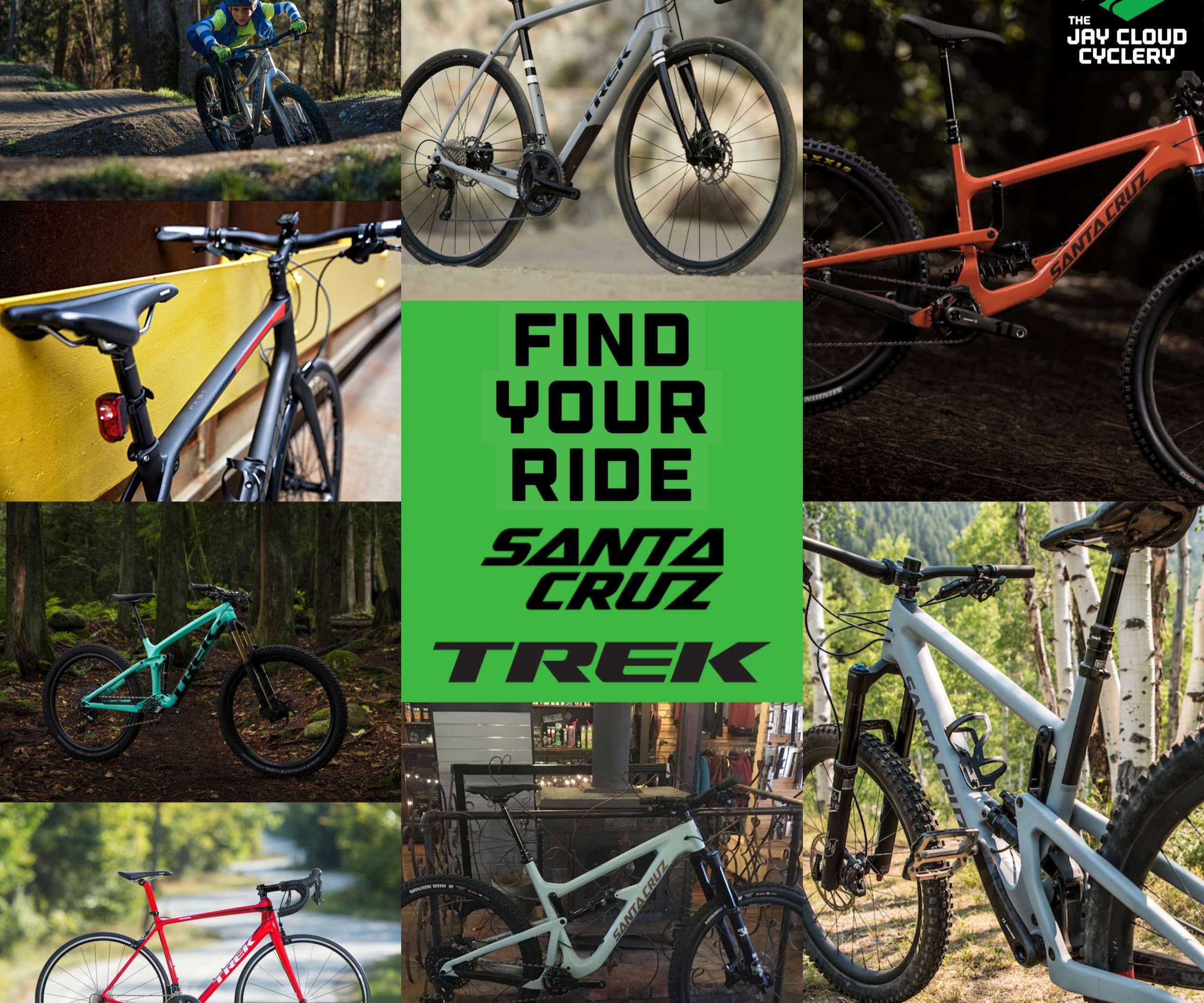 Quality & Value - Photo of Trek & Santa Cruz bikes