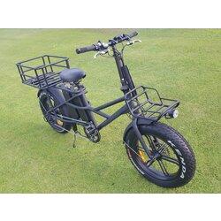 Yassan Motors Delivery E-Bike