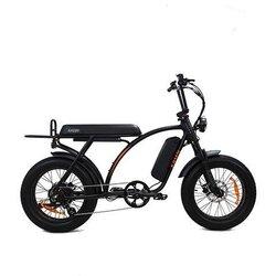 Kasen Bikes KABBIT 1000