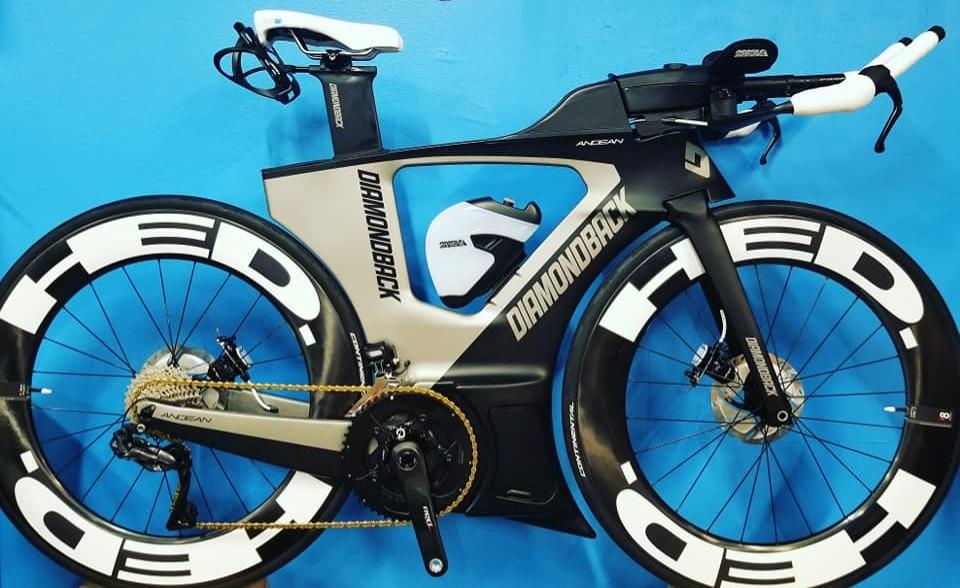 Diamondback Andean Bicycle