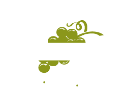 Napa Valley Bike Shop Home Page