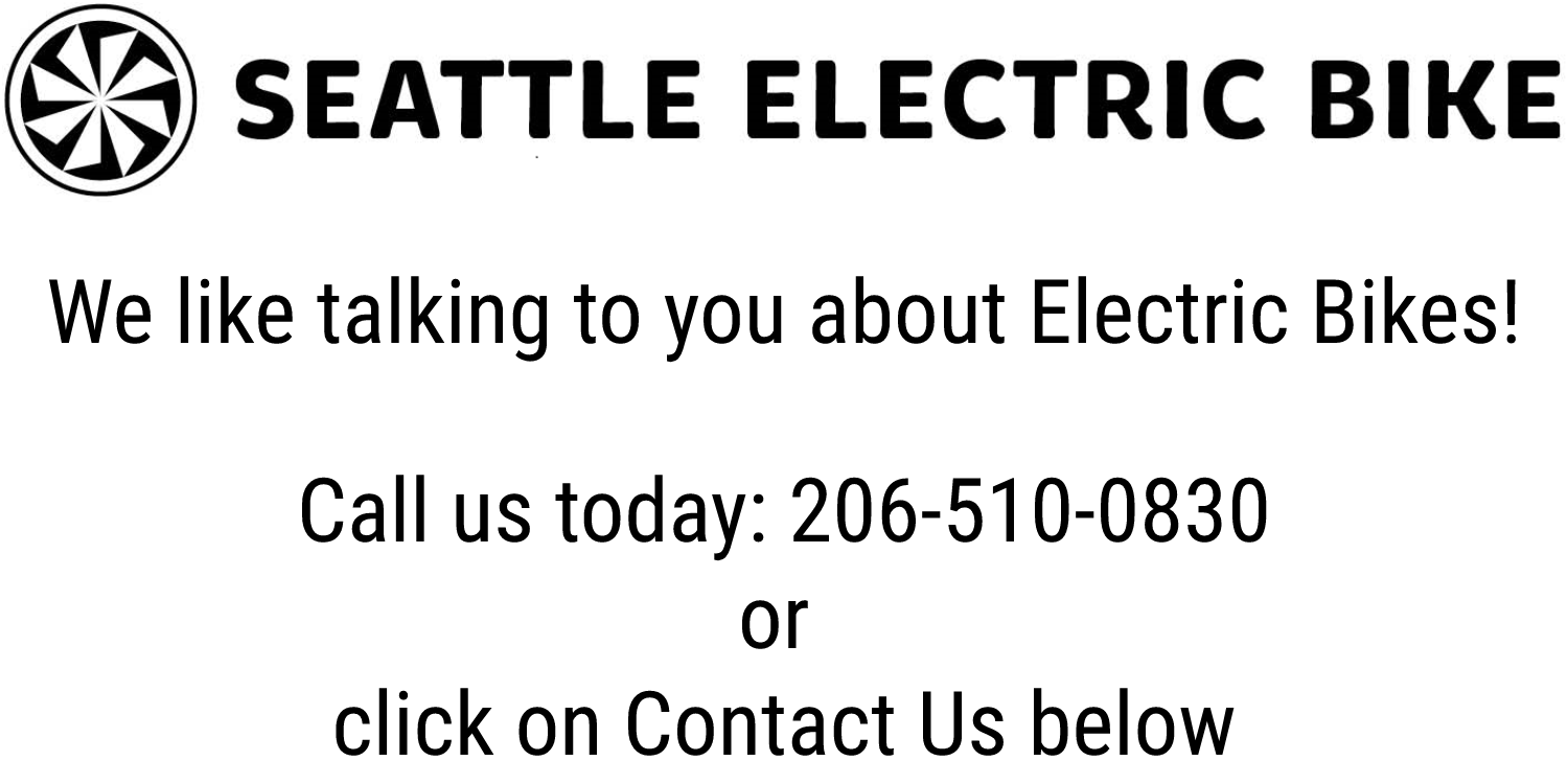 Seattle Electric Bike Home Page