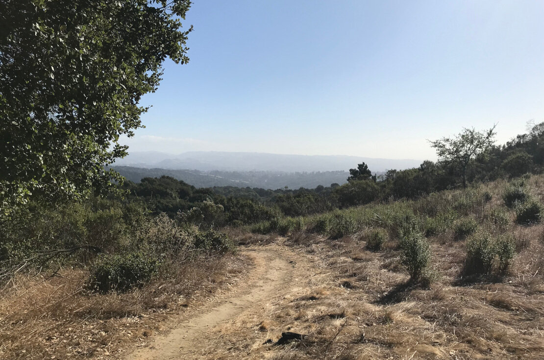Looking out from Brandon Trail