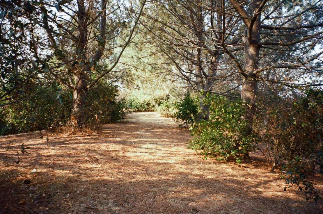 Oyster Bay Regional Park