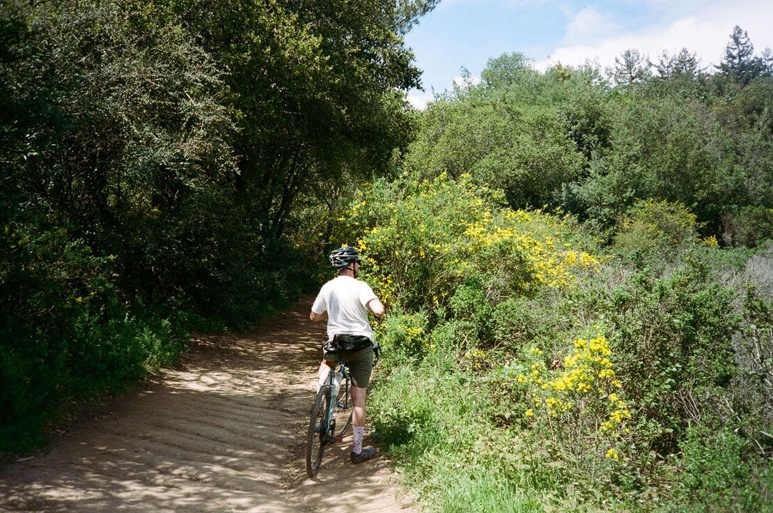 Graham Trail, Redwood Regional Park