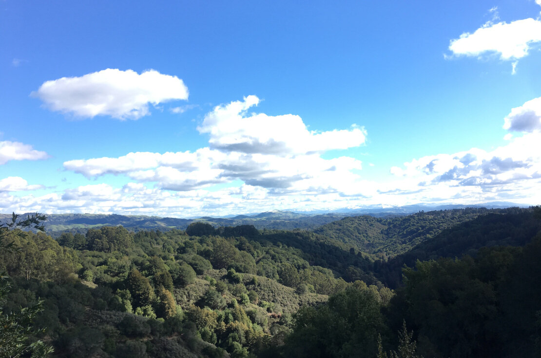 View of Diablo and eastward from Graham trail