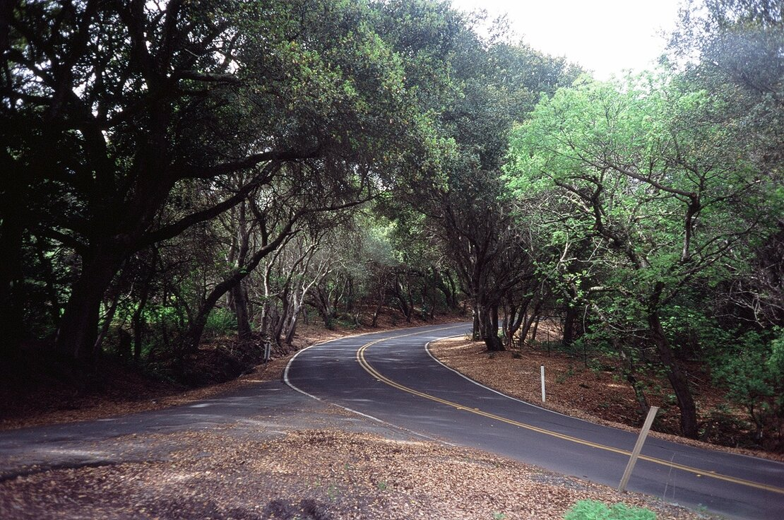 Wildcat Canyon Road