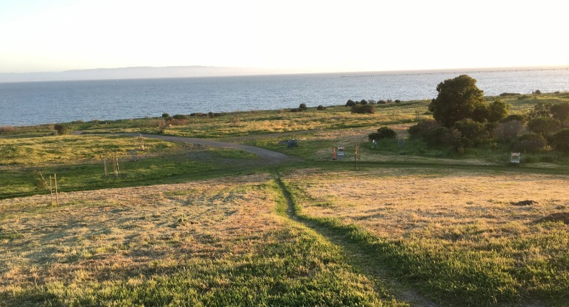 Bay Trail from Albany to Point Richmond