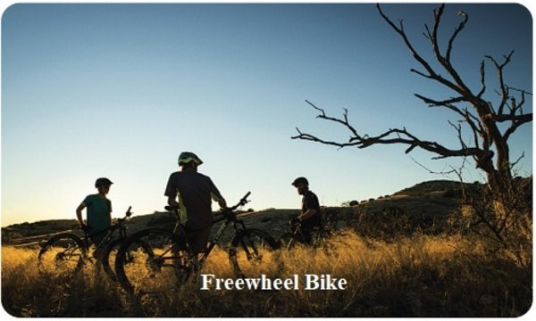 Freewheel Bike Gift Card