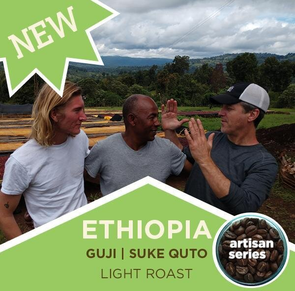 Coffee | Ethiopia Guji Artisan Series | Suke Quto | Fully Washed | Light Roast | Whole Bean