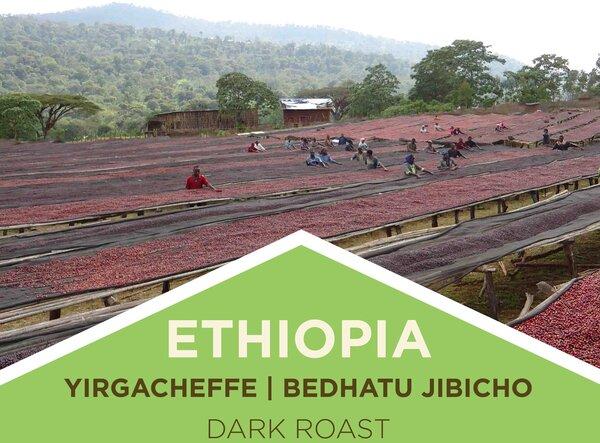Soulshine Cyclery Coffee | Ethiopia | Yirgacheffe - Bedhatu Jibicho - Dark Roast | Whole Bean