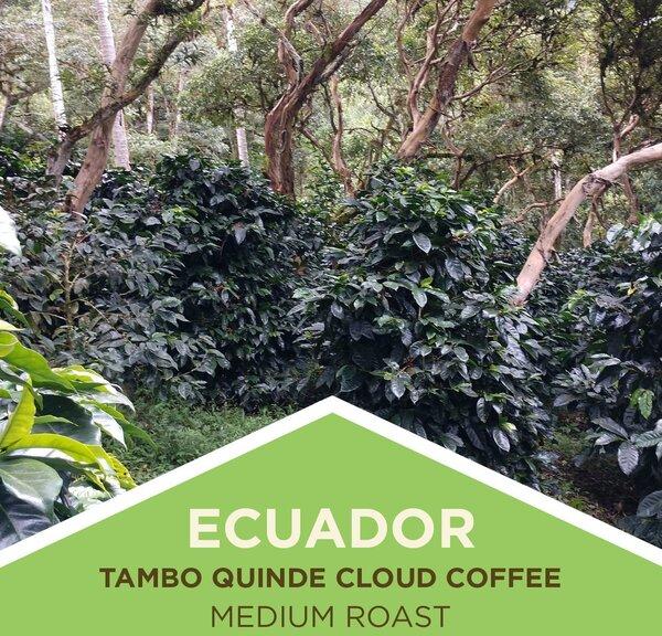 Coffee | Ecuador | Cloud Coffees | Whole Bean