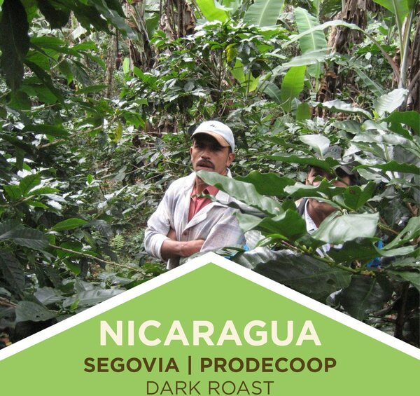 Coffee | Nicaragua | Segovia/PRODECOOP | Dark Roast | Whole Bean