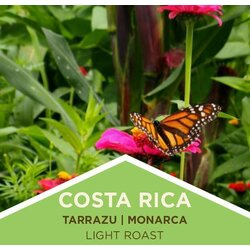 Coffee | Costa Rica | Tarrazu | Monarca | Washed | Ground