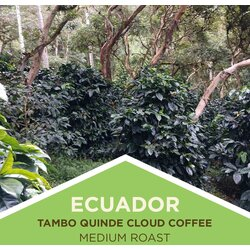 Coffee | Ecuador | Cloud Coffees | Ground