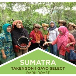 Coffee | Sumatra | Takengon Gayo Select | Dark Roast | Ground
