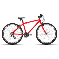 Frog Bikes 73