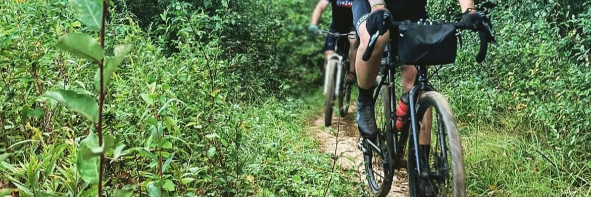 Cyclists riding a trail through some overgrowth