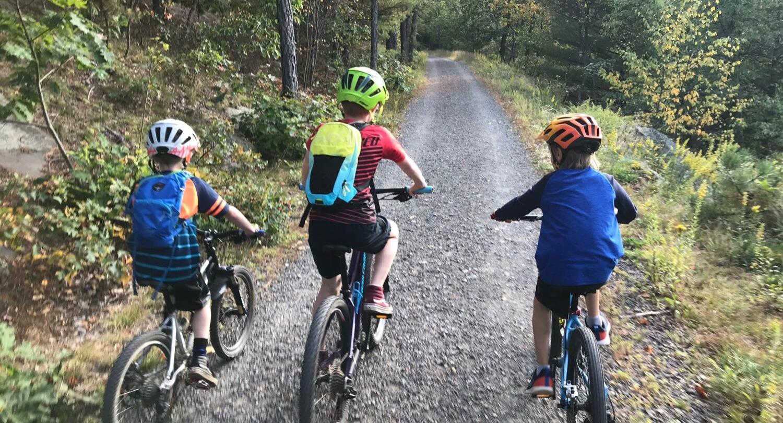 3 mountain bikes riding on a trail