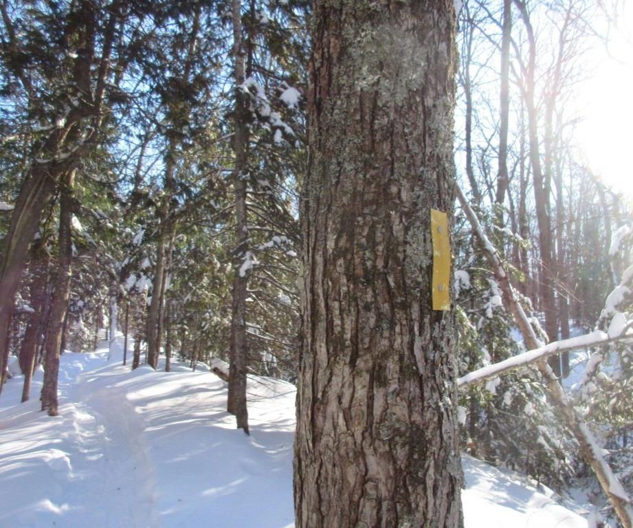 Hiawatha XC Ski Trails