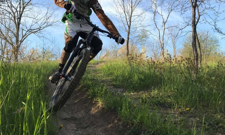 Carving The Trails