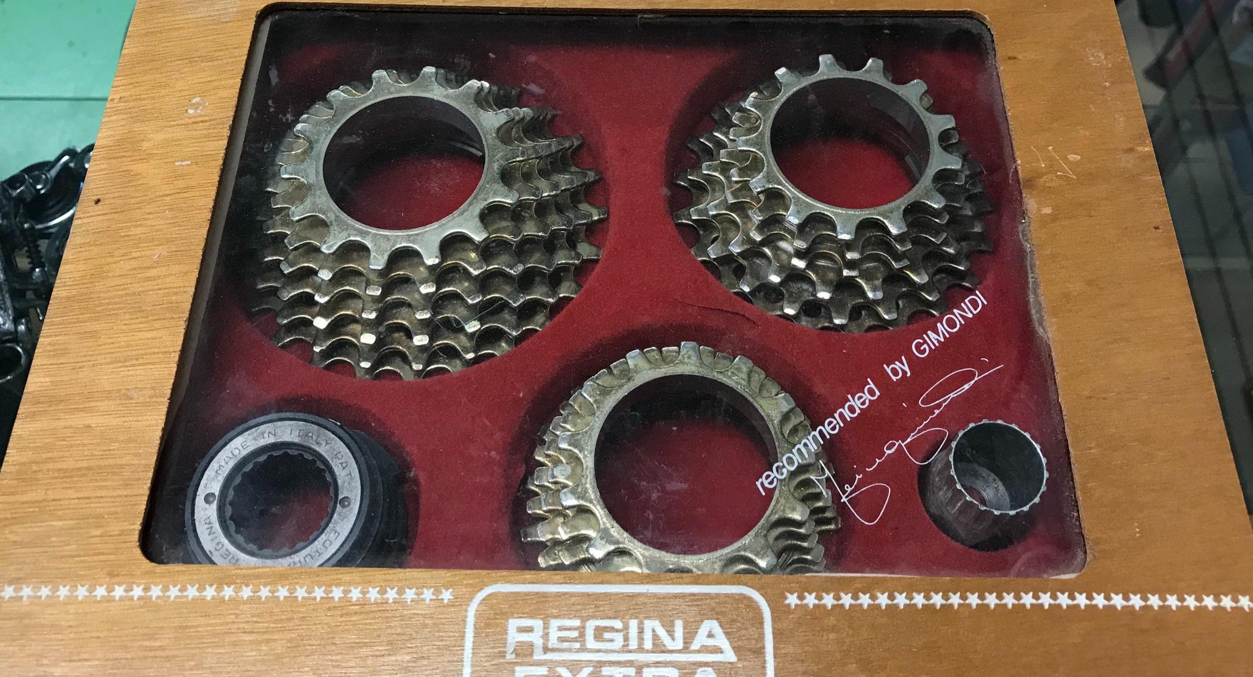 Regina Freewheels