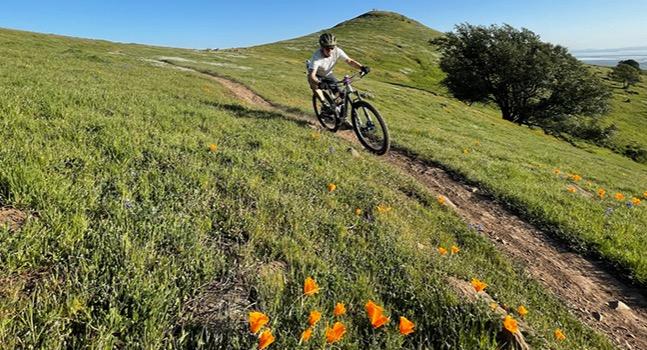 Mountain biker riding trails in Napa, CA