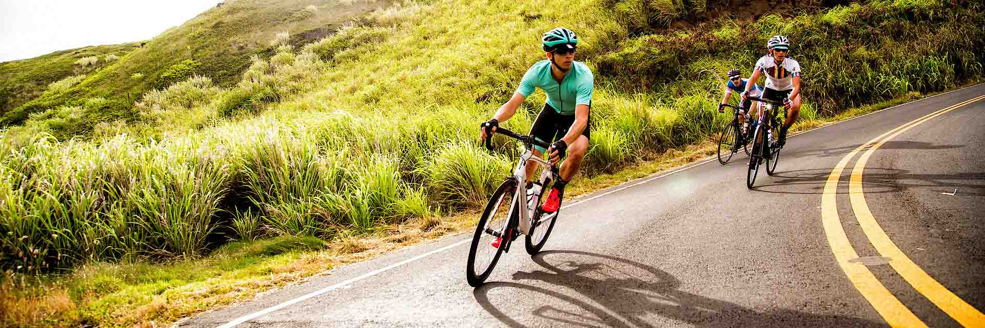 Road Bikes at Trek Bicycle Superstore