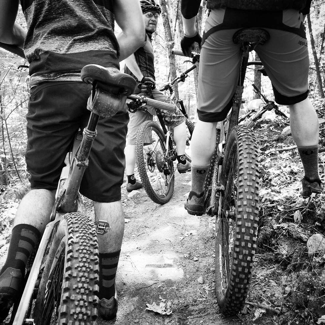 Mountain bike riders