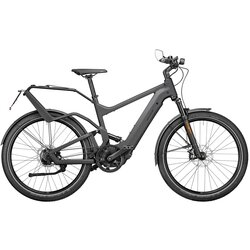 Riese & Müller Delite Rohloff Perf. Speed Grey 56cm 625wh Nyon