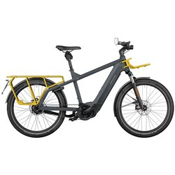 Riese & Müller Multicharger Rohloff Perf. Speed Grey/Curry 49cm 1125wh Nyon Passenger kit