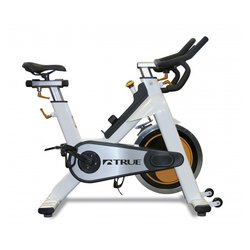 True Fitness Indoor Spin Bike