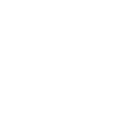 Momentum Lifestyle Bicycles
