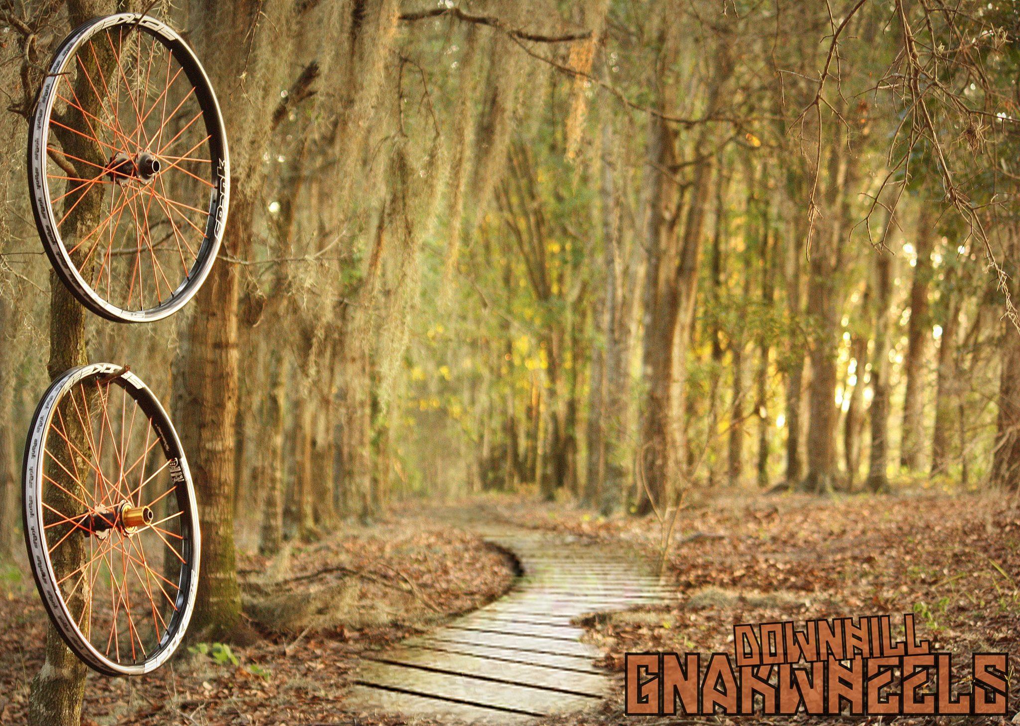 Gnarwheels Spank Spike / Profile Elite - AJ's Bikes and