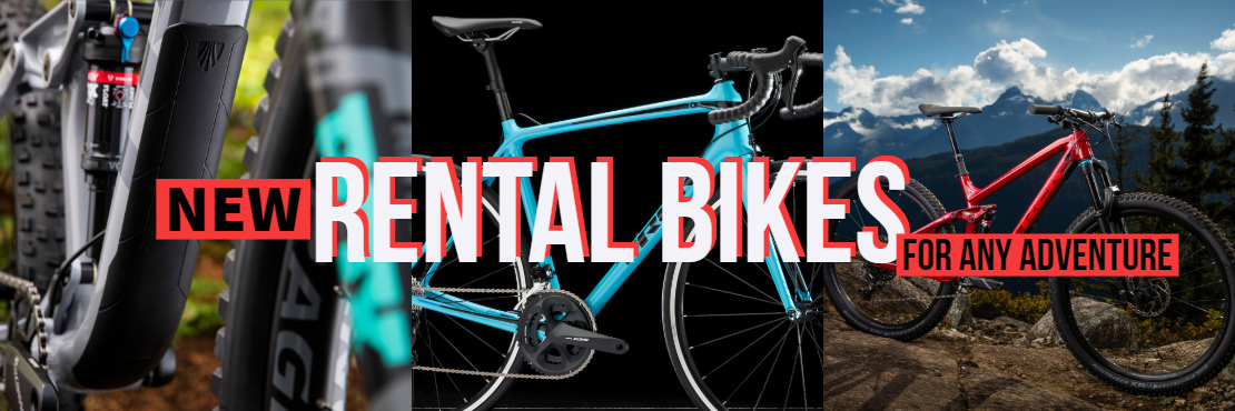 Rental Bikes For Any Adventure