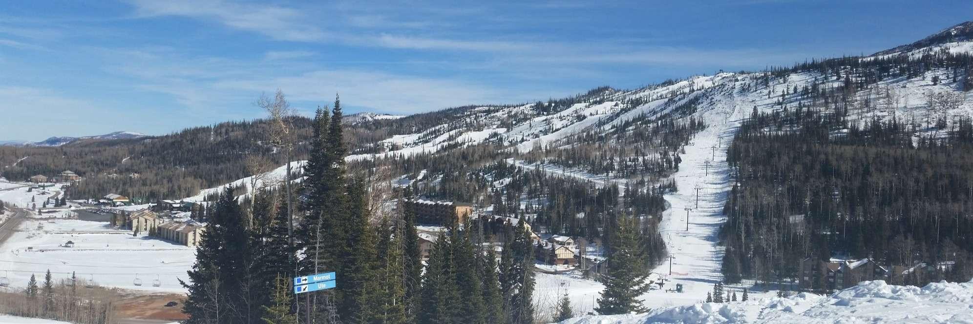 Ski & Snowboard Tuning