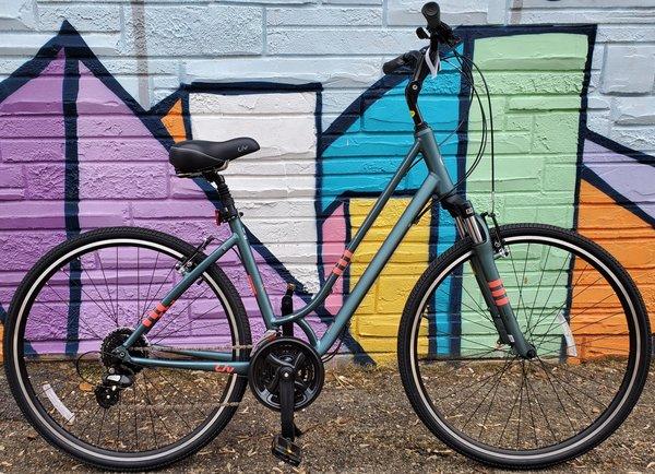 Appleton Bicycle Shop LIV Flourish FS1
