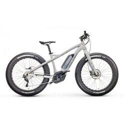 Raleigh Electric Magnus IE