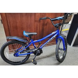 Appleton Bicycle Shop Raleigh MXR 20