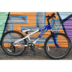 Appleton Bicycle Shop MT220 24