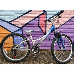 Appleton Bicycle Shop MT220 Silver/Blue 24