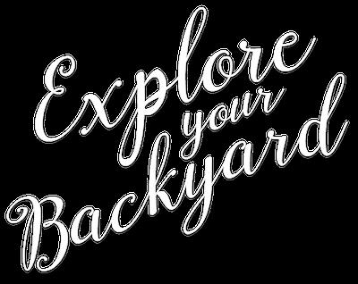 Explore Your Backyard