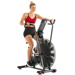 Schwinn Fitness Air Dyne AD7