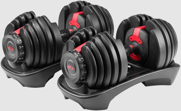 Bowflex SelectTech 552 Dumbbell Pair