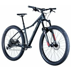 Borealis Telluride Eagle 12 speed