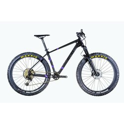 Borealis Crestone Eagle 12 speed - Large